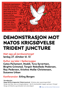 Plakat Demo